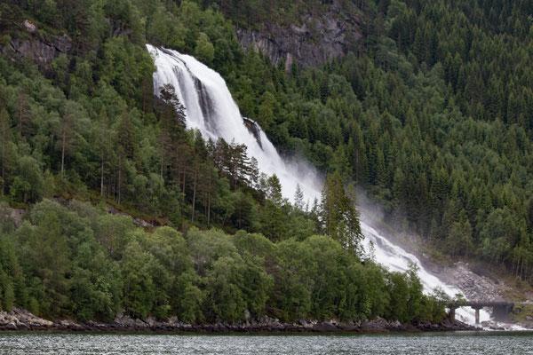 Wasserfall im Hardanger Fjord/ waterfall in the Hardanger Fjord