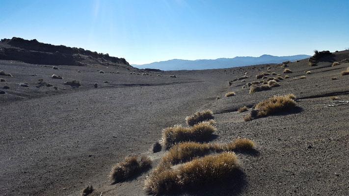 Neuseelands einzigste Wüste östlich des Ruapehu