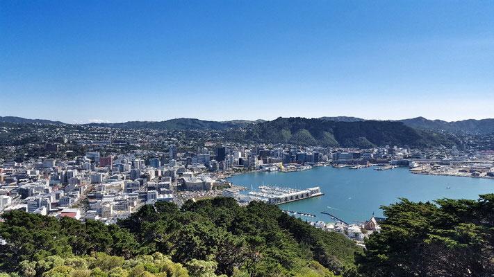 Wellington vom Mount Victoria