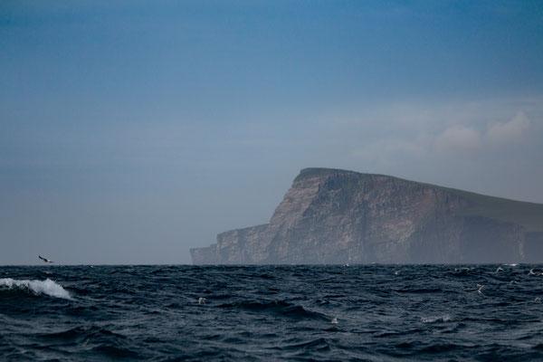 Ankunft auf den Shetland Inseln am Morgen/ Shetland Island arrival in the morning