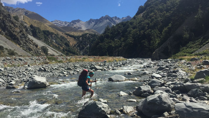 Bush Stream am Te Araroa
