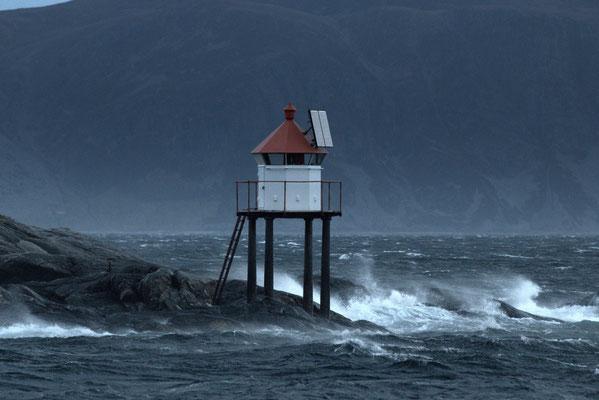 derSturm geht weiter - the storm continues