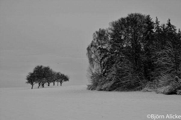 Winterstimmung, Heilbronn