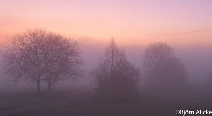 Morgennebel, Heilbronn