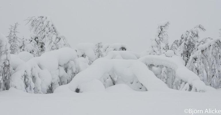 Schneelast, Finnland