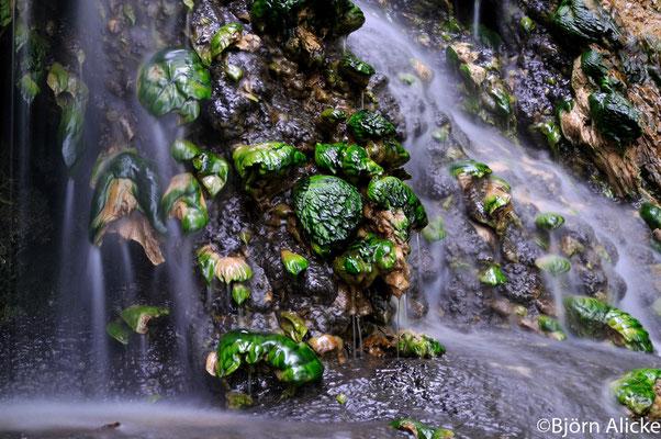 Mini-Wasserfall, Heilbronn