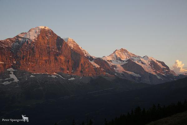 Eiger, Mönch, Jungfrau, Silberhorn