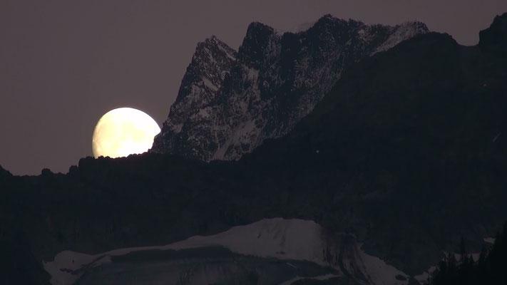 Finsteraarhorn Berner Oberland