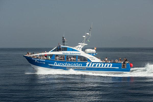 Walbeobachtung vom Motorboot aus vor Tarifa