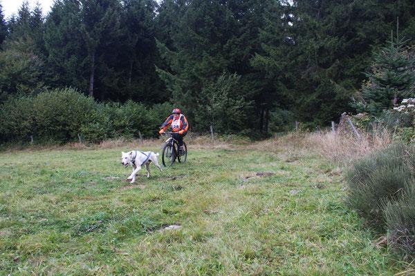 Corinne en bike-joring