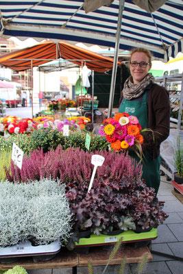 Alles was grünt und blüht, hat Gartenbau Struck im Angebot. Nehmen Sie sich eine Strauß frischer Blumen mit.