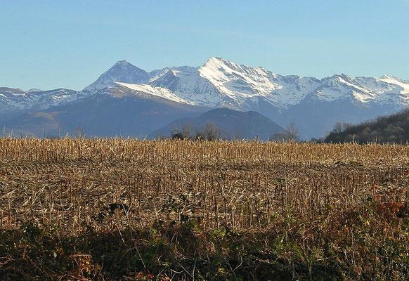 Pic du Midi vu de la Lande