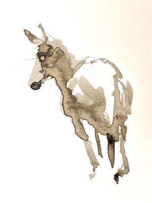 Donkey study, bister and ink on A5 paper by Philine van der Vegte