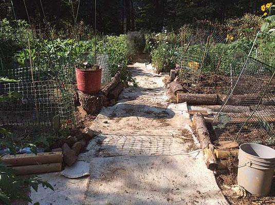 関節炎を患うローラ・ジョンソンは、菜園を設計し直して、体に合うようにした。フーゲルカルチャーの畝に座り、草取りや収穫ができる。