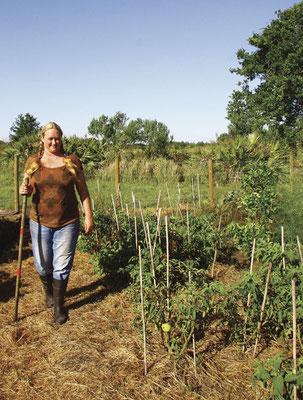 菜園のトマトを見回るケリー。