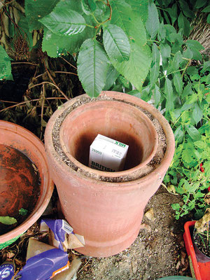 Zeer が中身を涼しく保つのは、二重の陶器の鉢の間の湿らせた砂(上の写真)または布から水が気化するため。