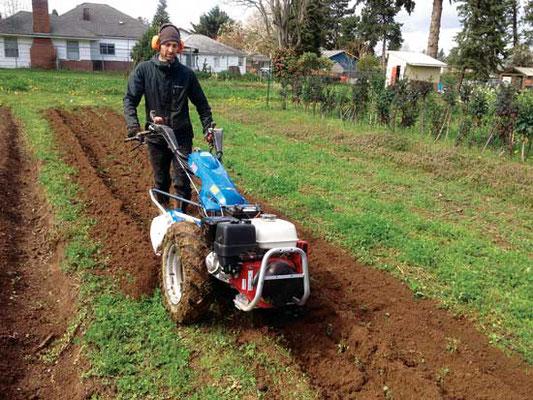カリーご近所農園の共同創設者 Matt Gordon が農園の BCS ウォークビハインドトラクターを使用している。Photo by Josh Volk