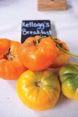 「ケロッグ・ブレックファースト」は他の多くのビーフステーキ種よりも甘い。
