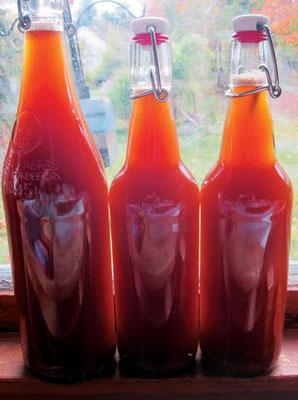乾燥イーストを一つまみ加えたら、ボトルにフタをする。温かい場所に2、3日置いてルートビアを発酵させる。Photo by Susan Verberg
