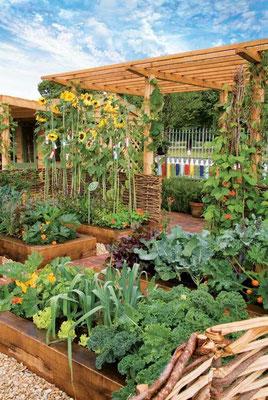 バイオ集約と 30cm 四方農法の原則の良いところを組合わせ、自分好みで収量の多い栽培のし マザーアースニューズ日本版 くみを生み出す。