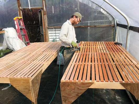 カリーご近所農園の繁殖ハウス内で Josh Volk がスタートテーブルを作っている。Photo by Matt Gordon