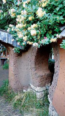 魅力的に開花する植物を選ぶと美しさと力強さに的を絞れる。Photo by Chris McClellan