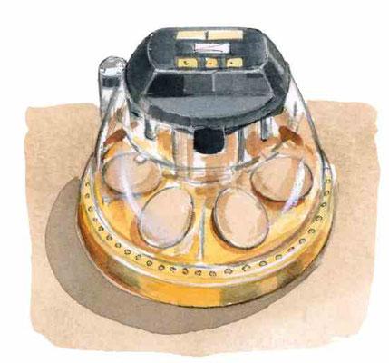 このBrinseaの卓上モデルのような孵化器は、卵を抱きたがる雌鶏がいない場合に卵を孵す別手法。Illustration By Elayne Sears