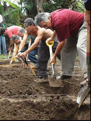 「2 度耕作」で、掘って、埋め戻す、バイ オ集約栽培の肝だが、やる価値がない かもしれない。