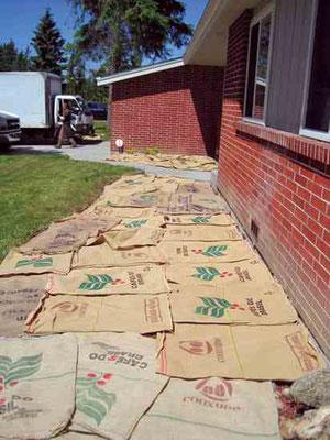 麻袋をマルチシートとして使い、草を枯れ させ食べ物を育てるスペースにできる。 Photo by Jessi Bloom.