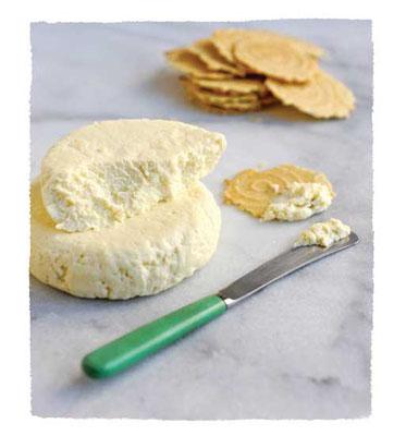 ファーマーズチーズは手早くできてクラッカーのスプレッドとして美味しい。Photo by Workman Publishing/Matthew Benso
