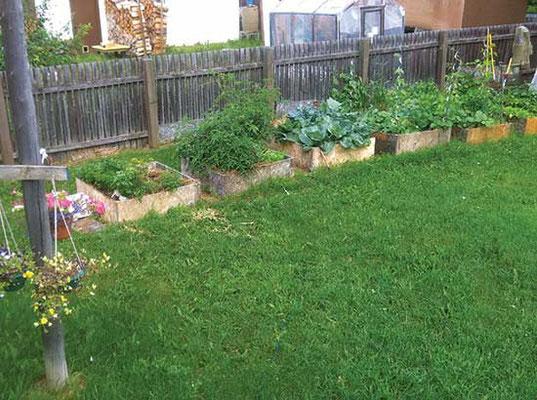 厚いマルチと上げ床で栽培して上手くいっている読者のカム・プラット(小さな区画から素晴らしい成果)。