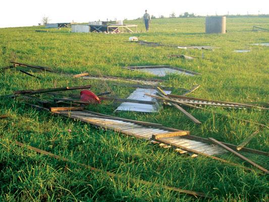 デレッチョで Polyface Farm の可搬式農場小屋が全壊し、小屋を失くした1,500羽の鶏が取り残された。Photo by Sheri Salatin