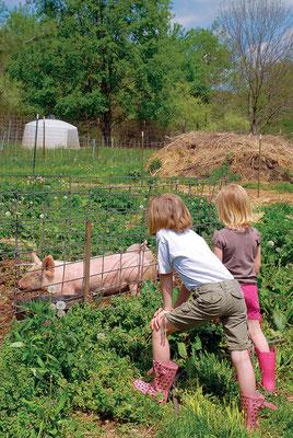 敬意と尊重の念をもって家畜を扱うことは、思いやりに根ざした子供たちの世界観の構築に役立つ。