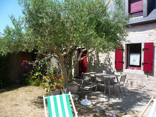 terrasse ombragée sous l'olivier et la treille de vigne