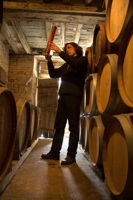Benoit Louvet in the Claque-Pepin cellars