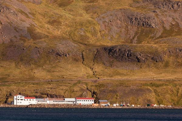 Norðurfjörður, Westfjorde, Island, Sep. 2013