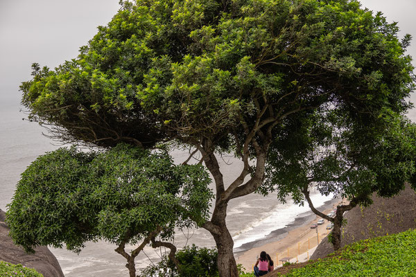 Miraflores, Lima, Nov 2019