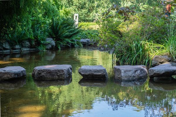 Schrittsteine, Japangarten Karlsruhe, Juli 2019