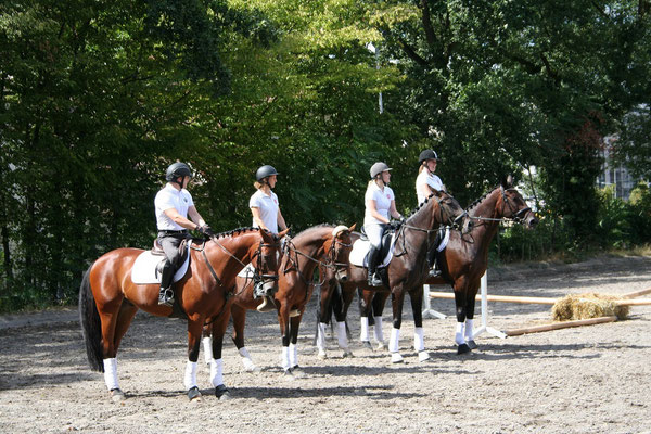 Sommerfest 2018 Springquadrille - FRFC