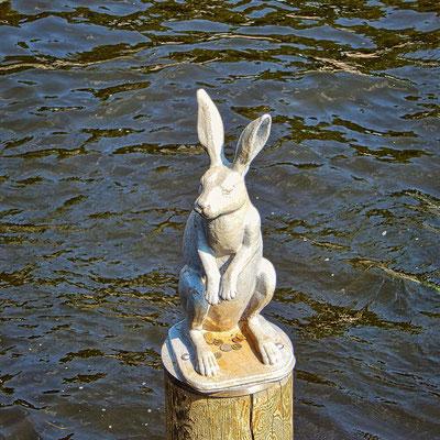 kleiner Hase an der Brücke bei einem Tagesausflug St. Petersburg
