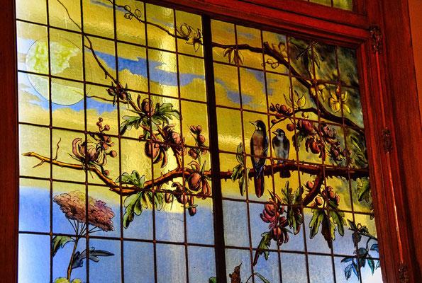 Fenster bunt bemalt mit Vögel
