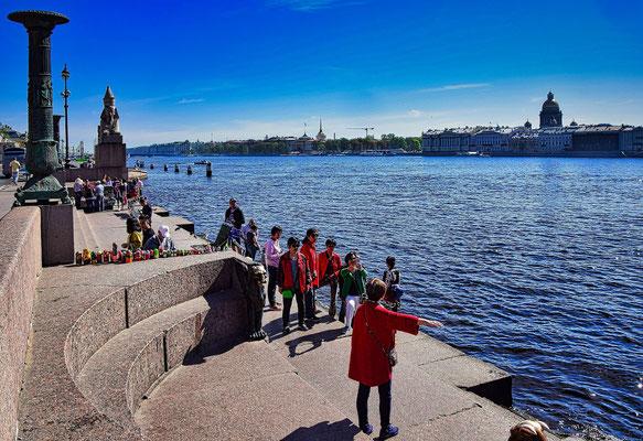 Sphinxen in St Petersburg bei einem Tagesausflug St. Petersburg