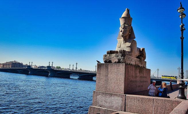 Phinxen in Sankt Petersburg