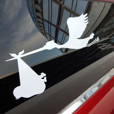 Storch auf der Fensterscheibe