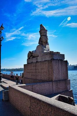 an den Sphinxen halten wir bei unserem Tagesausflug durch St. Petersburg