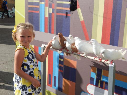Mädchen mit Tauben im Zentrum Sankt Petersburgs