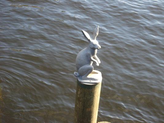 Der Hase sieht etwas verloren und einsam aus! Als ob er fragt, wo sind die anderen Hasen geblieben? Überall die große Stadt und die vielen Menschen.