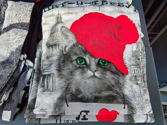 Shirt mit Isaakskathedrale und Katze