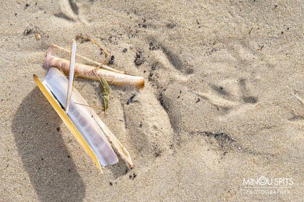 Nog meer strandkunst