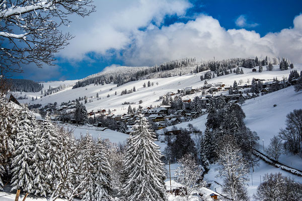 Winter in Todtnauberg